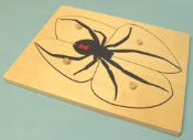 Black Widow Spider Puzzle and Control