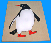 Penguin Puzzle and Control